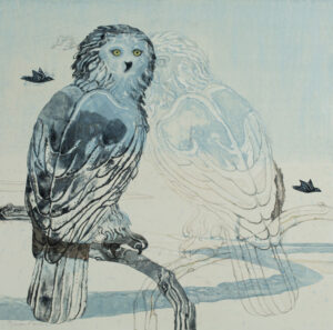 SUSAN AMONS Snowy Owl II No. 2 (new) monoprint, 20 x 20 inches $800