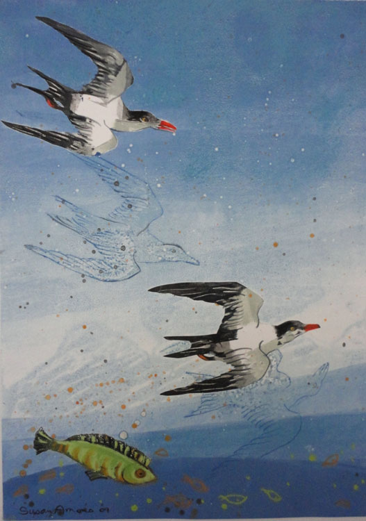 SUSAN AMONS Terns with Green Fish II, monoprint with pastel, 10 x 14 inches
