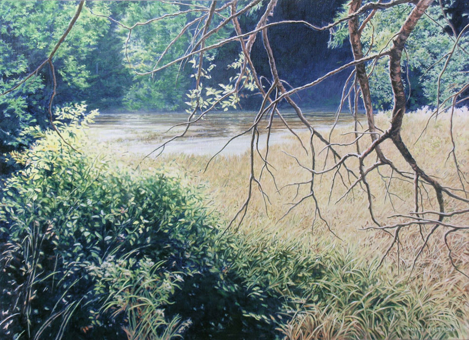 JANICE ANTHONY Lost Pond, Cobscook, acrylic on linen, 16 x 22 inches