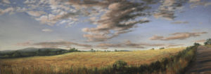 JUDY BELASCO Prospect Hayfield, Maine oil on panel, 12 x 30 inches