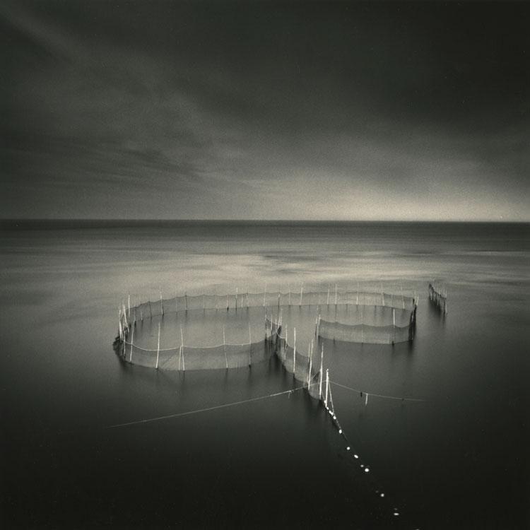 LISA TYSON ENNIS Fishing Weir Study XVII, Grand-Manan, toned silver print, 14 x 14 inches