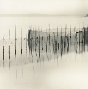 LISA TYSON ENNIS Fishing Weir Study XX, Deer Island toned silver print, 14 x 14 inches