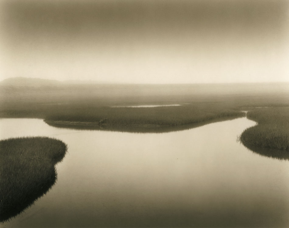 LISA TYSON ENNIS Marsh Study II, original toned silver print 7 x 9 inches