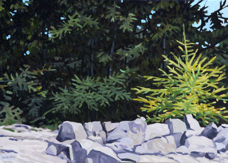 JUNE GREY New Growth, oil on linen, 10 x 14 inches