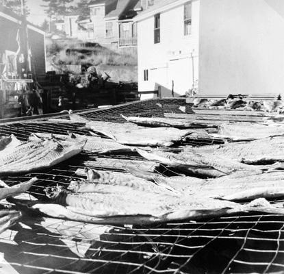 BERENICE ABBOTT Strip Fish (Salted Fish), c. 1966, vintage silver gelatin photograph, 10 x 10 inches