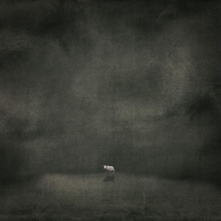 LILIAN DAY THORPE Night Lamb, digital montage, 9.5 x 9.5 inches