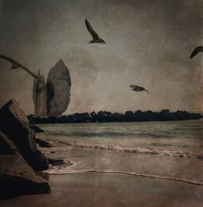 LILIAN DAY THORPE Teal Gulls digital montage, 5 x 5 inches