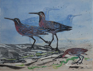 SUSAN AMONS Sandpipers No.3A monoprint with pastel, 16 x 20 inches $400