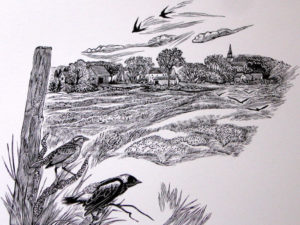 SIRI BECKMAN Bobolinks wood engraving, 5 x 7 inches