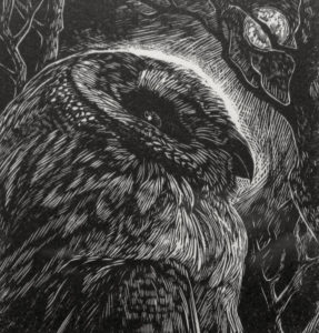 SIRI BECKMAN Night Owl wood engraving, edition of 100, 3.25 x 3 inches $200