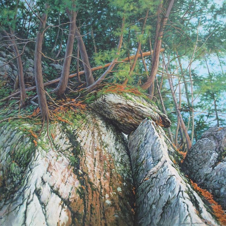 JANICE ANTHONY Balancing Rock, acrylic on canvas, 18 x 18
