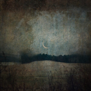LILIAN DAY THORPE Meadow Moon photomontage, edition of 25, 10 x 10 inches $300