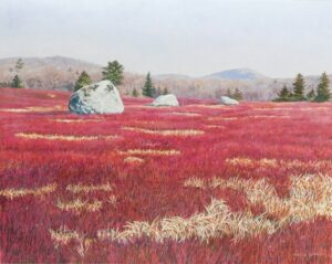 JANICE ANTHONY Blueberry Barrens Below Schoodic Mountain acrylic on linen, 16 x 20 inches SOLD