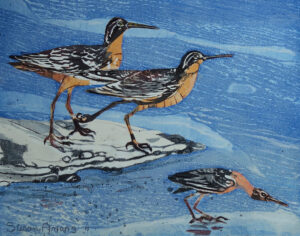 SUSAN AMONS Sandpipers 1a monoprint, 11 x 14 inches $400