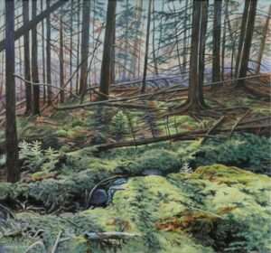 JANICE ANTHONY Light in the Forest acrylic on canvas, 13 x 14 inches $2300